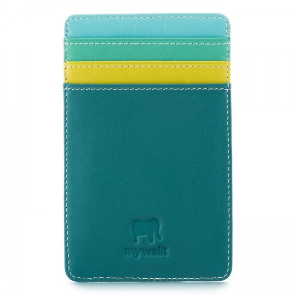 N/S Credit Card Holder Mint
